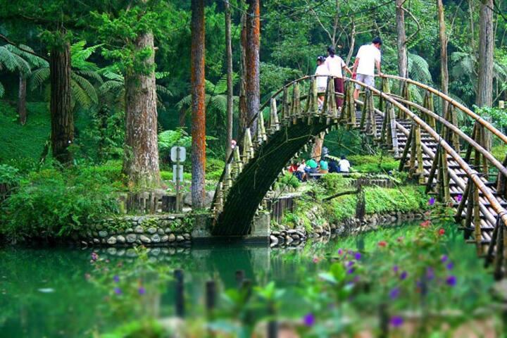 六人套房-鄰近芬多精豐富的溪頭森林遊樂區和妖怪村[松原山莊],家族百年傳承茶藝,製作凍頂烏龍茶
