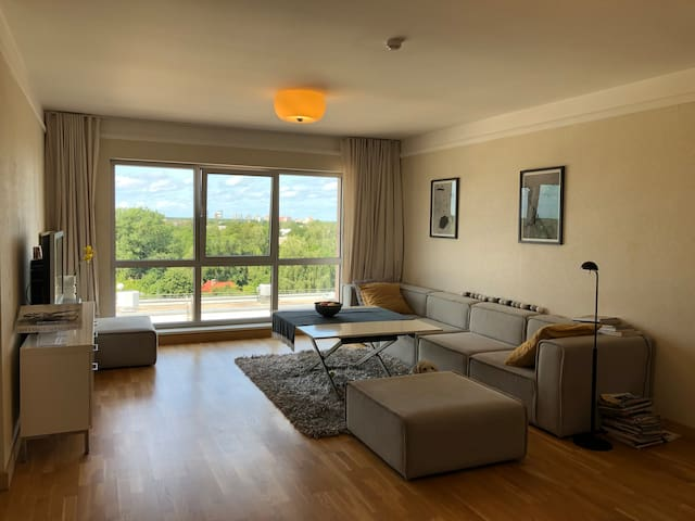 1 ROOM in spacious apartment shared with the Host