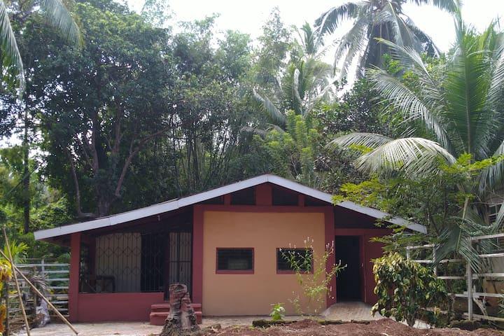 Josefa Farm Villa in Cuyo Island Palawan