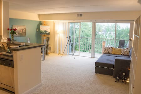 Cozy Apartment in South Arlington - Arlington - Apartment