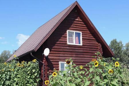Деревянный фермерский дом в эко районе
