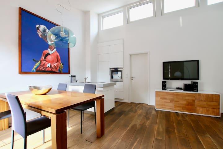Penthouse Apartment, 2 terraces, quiet and central