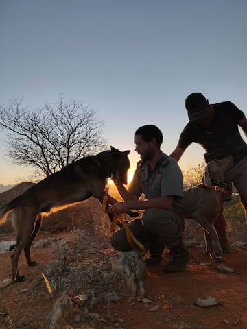 Sunset with the k9 anti poaching team