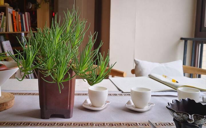 春熙路太古里熊猫基地万象城边地铁直达民宿,禅茶之家