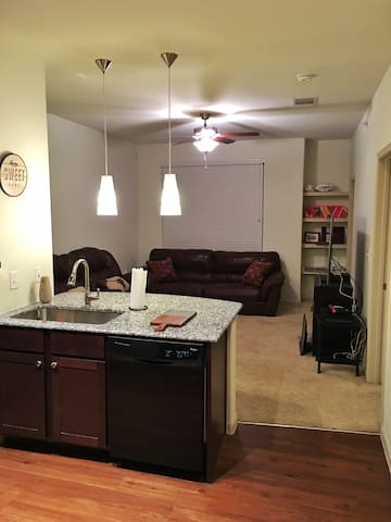 Upscale apartment! Great pool!!! - Lewisville - Apartamento