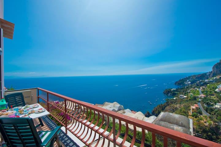 Ippocampo in Amalfi