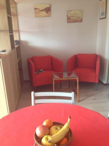 aix les bains , studio  très lumineux  et agréable - Aix-les-Bains - Apartment