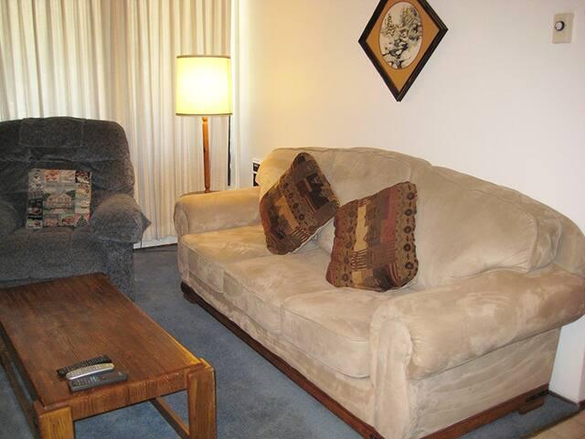 Furniture,Couch,Emblem,Cushion,Home Decor
