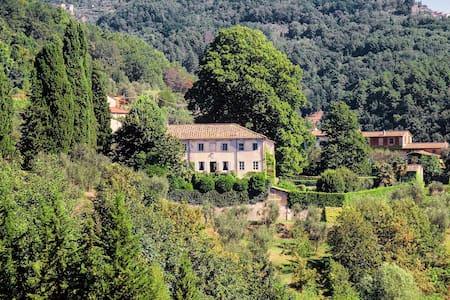 Villa Spada - 109564 - Vampromaro