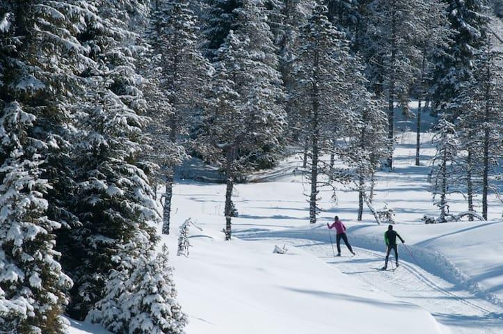 Ski de fond dans le massif de la haute joux, départ des pistes à 200m du gîte