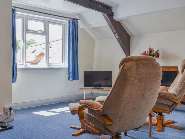 Vine Apartment - Central Totnes - Historic Narrows