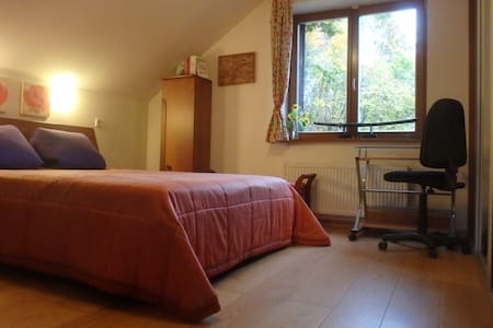 Luxurious private room near Old Town and forest - Vilnius - House