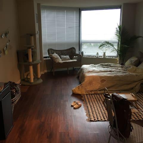 Lake View Studio Condo - Chicago - Condominium