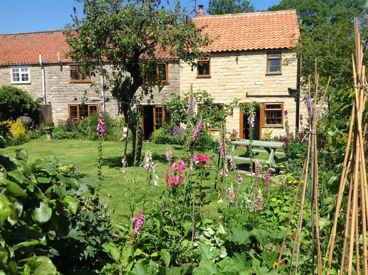 The back of Rye View Cottage where people are welcome to sit out either around the fire pit or on one of the garden benches.