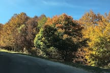 una esperienza di 'Foliage', un tragitto tra calde variazioni di colore, in autunno