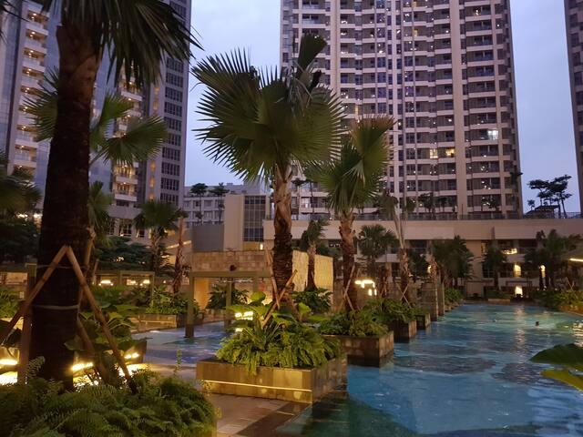Garden night view