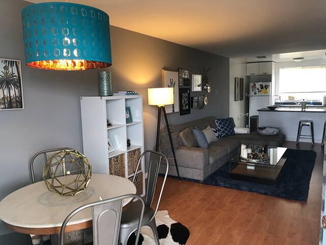 1 Bedroom/Loft style w/rooftop