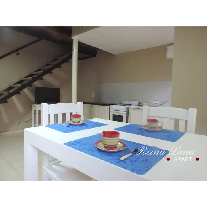 Departamento 1 dormitorio tipo Duplex/Loft