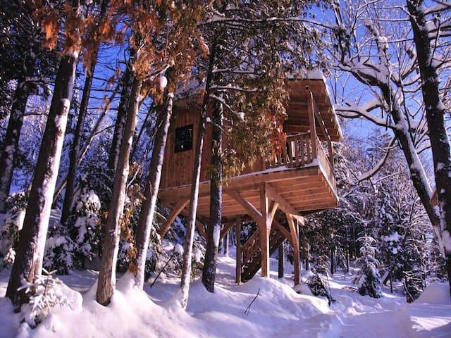 Cabane dans les arbres le Colibri
