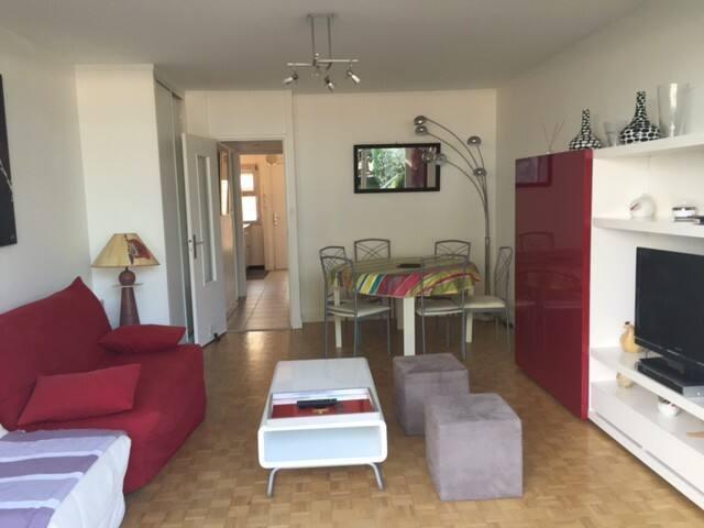 Salon avec 2 Bz, table basse, poufs,  meuble de rangement, tv hd, table à manger avec 6 chaises.