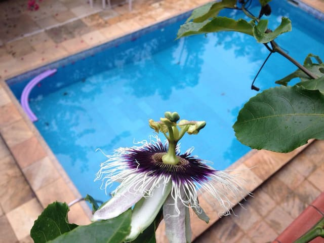 Casa Flor Paquetá, Suíte Família