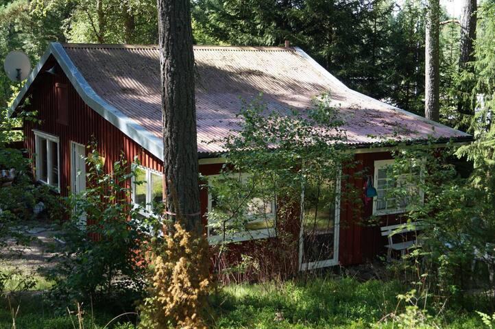Toms Hütte