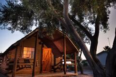 005+Colorado+River+Camping+Cabin+Sleeps+4