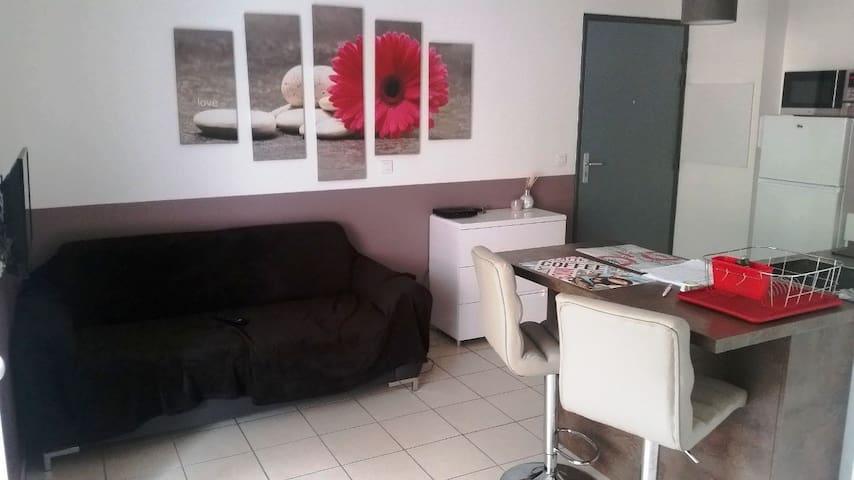 Ajaccio 10 mn des plages - 2 pièces  parking calme - Ajaccio - Apartment