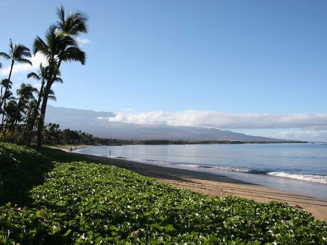 Sugar Beach Maui! Direct Ocean Front! Best Views!1