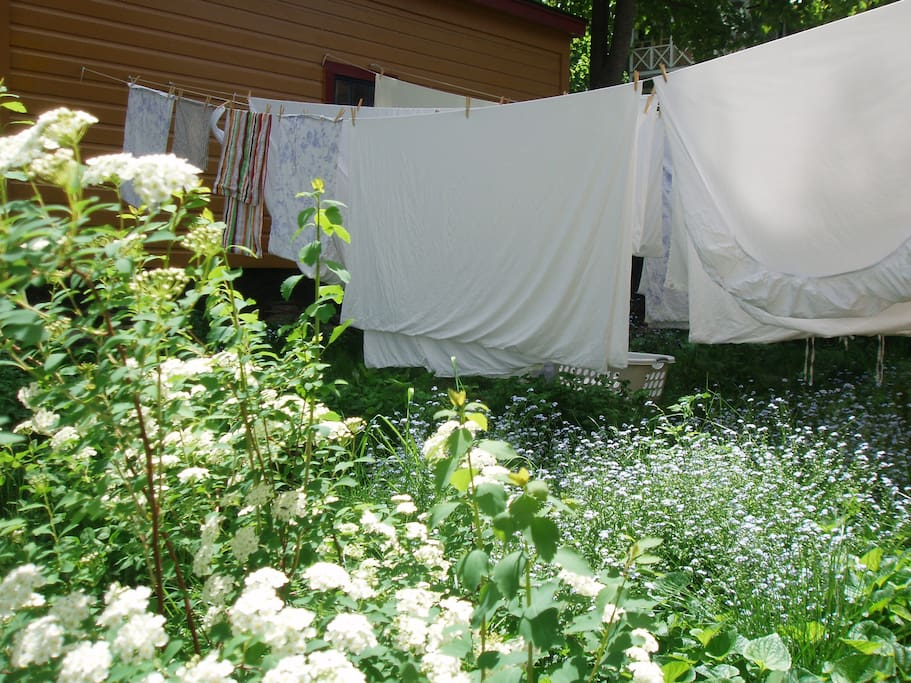 Line-dried sheets whenever possible.