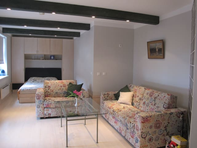 Arte Apartment.  Charming, cozy and best located.