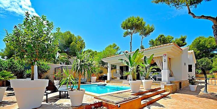 Villa PortAdriano ,all new, pool,aa/cc