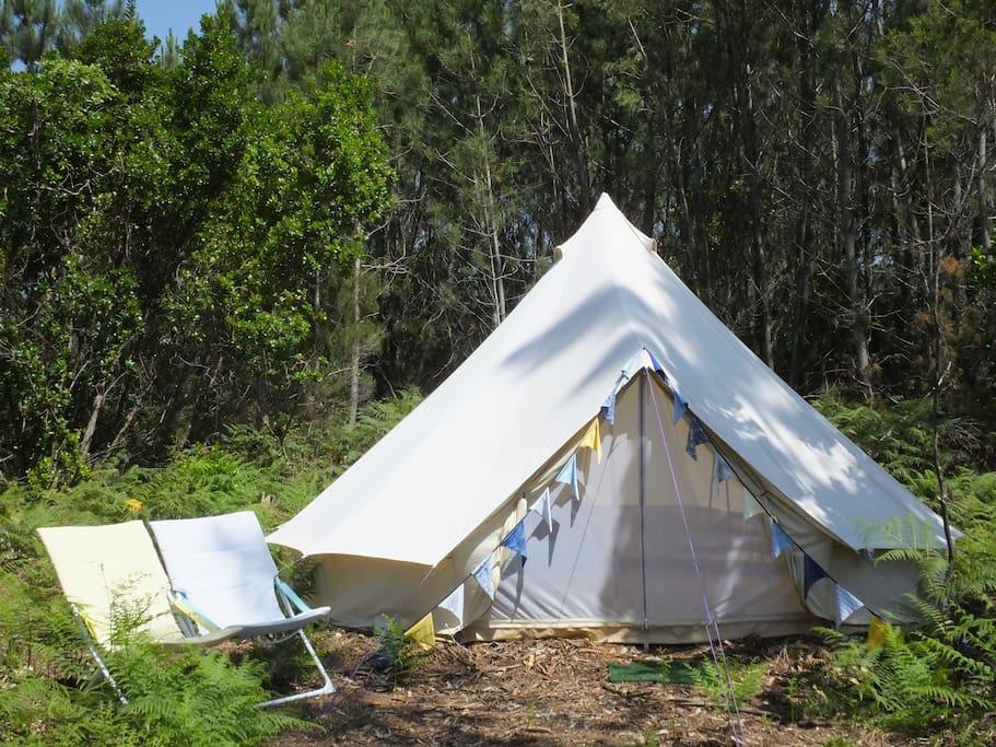 Tenda de Medronho (2)