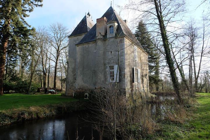 Château des Aulnays - Torcé-en-Vallée - Slott