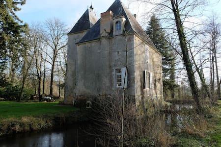 Château des Aulnays - Torcé-en-Vallée - Schloss