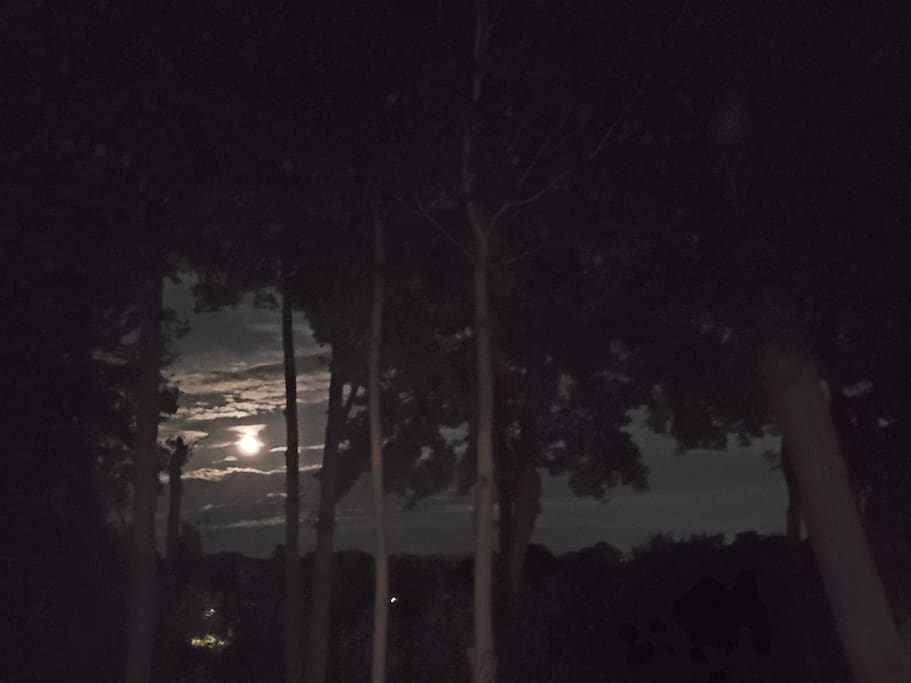 Evening moon view from deck and room