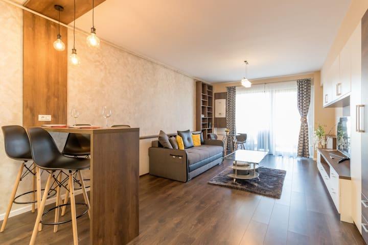 Modern Downtown Apartment