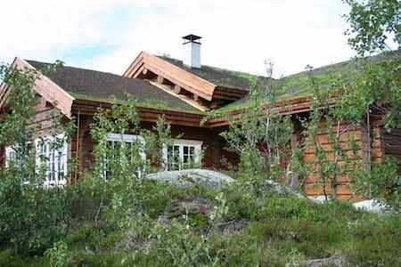 Beautiful log cabin for skiing and mountainhiking!