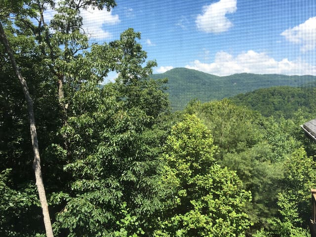 Asheville Mountain Top Hideaway - Asheville - Guesthouse