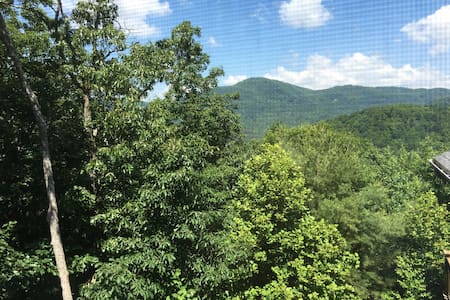 Asheville Mountain Top Hideaway - Asheville - Appartamento