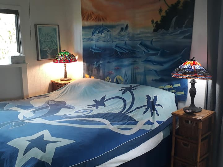 Dolphin Room at Dragonfly Ranch