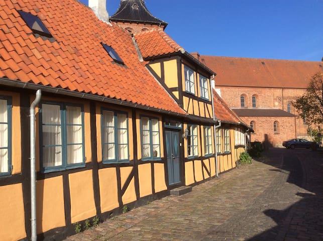 Unikt Bed & Bathtub i Svendborg C - Svendborg - Townhouse