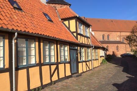 Unikt Bed & Bathtub i Svendborg C - Svendborg - Rivitalo