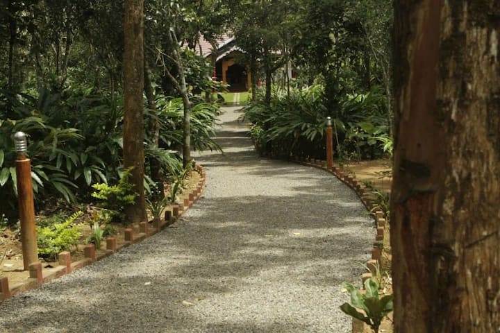 Home amidst cardamom plantation ,an ideal hideout.