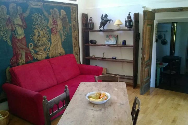 Charming house/apartment in Castel del Piano - Castel del Piano - Feriehjem