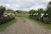 A Waikato River Retreat Private Guest Wing