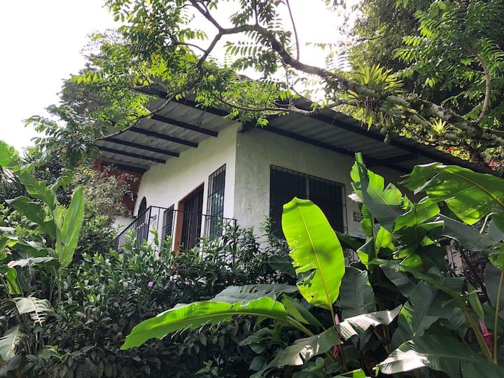 La Chachalaca eco lodge casita