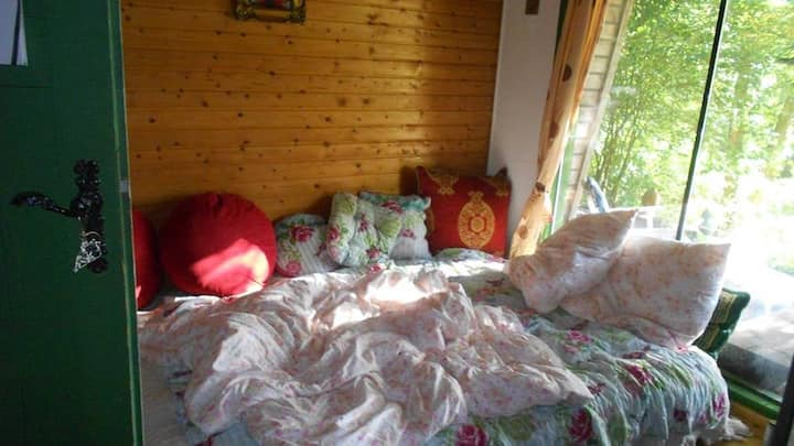 Blockhütte am Wald in Alleinlage