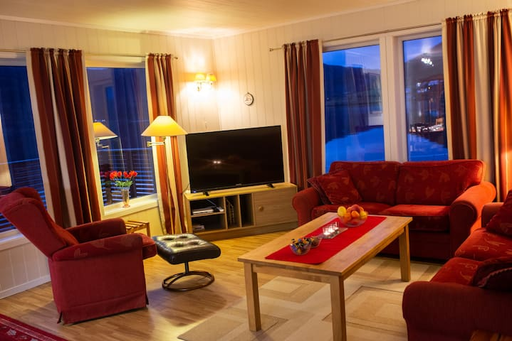 Spacious living room with cable TV, couch and a large veranda with a gorgeous fjord view.
