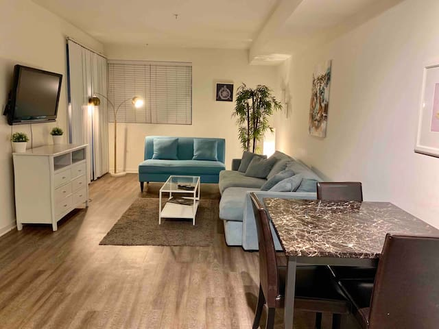 Cozy 1br apartment near to Universal Studios!!!